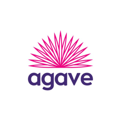 Agave Insurance Payments