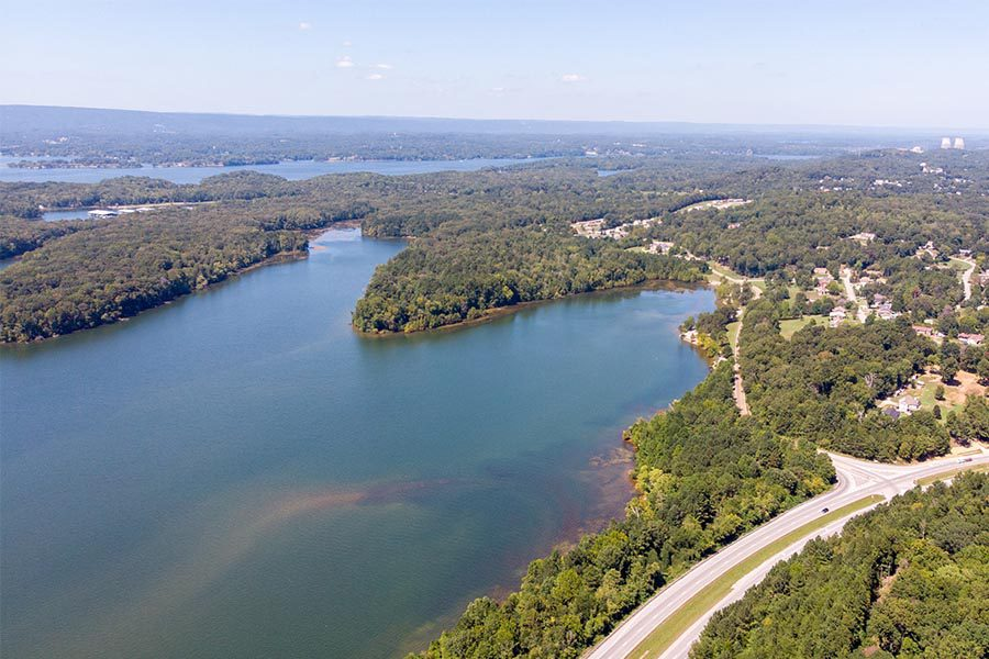 About Our Agency - Aerial View of Louisiana Water and Groves of Trees on a Sunny Day, Highway to the Right
