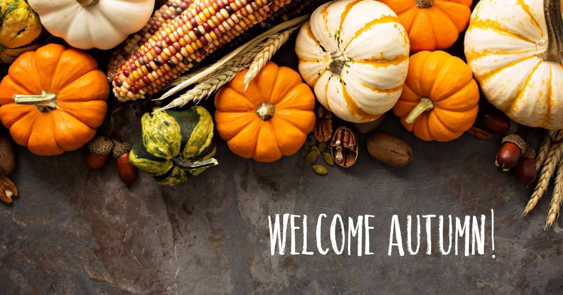 Social General - Welcome Autumn