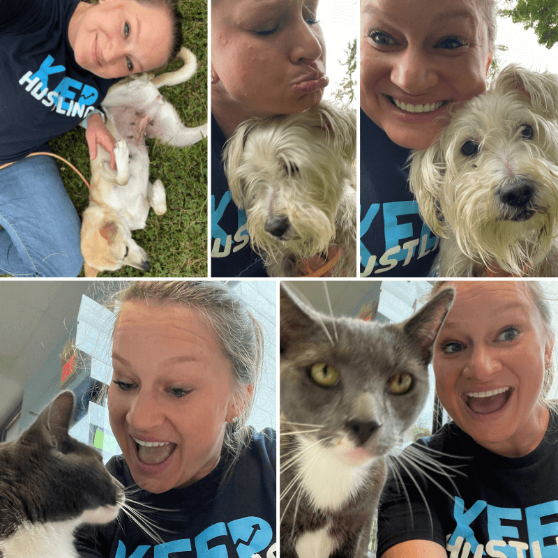 Lehigh County Humane Society - Collage of Bethany Making Faces With Dogs and Cats